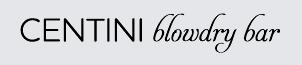 Blowdry_bar_web