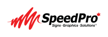Speedprologo_web